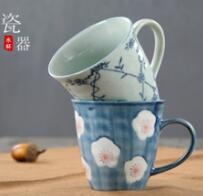 Direct sale of Japanese and Korean style water cups by Dapu manufacturers